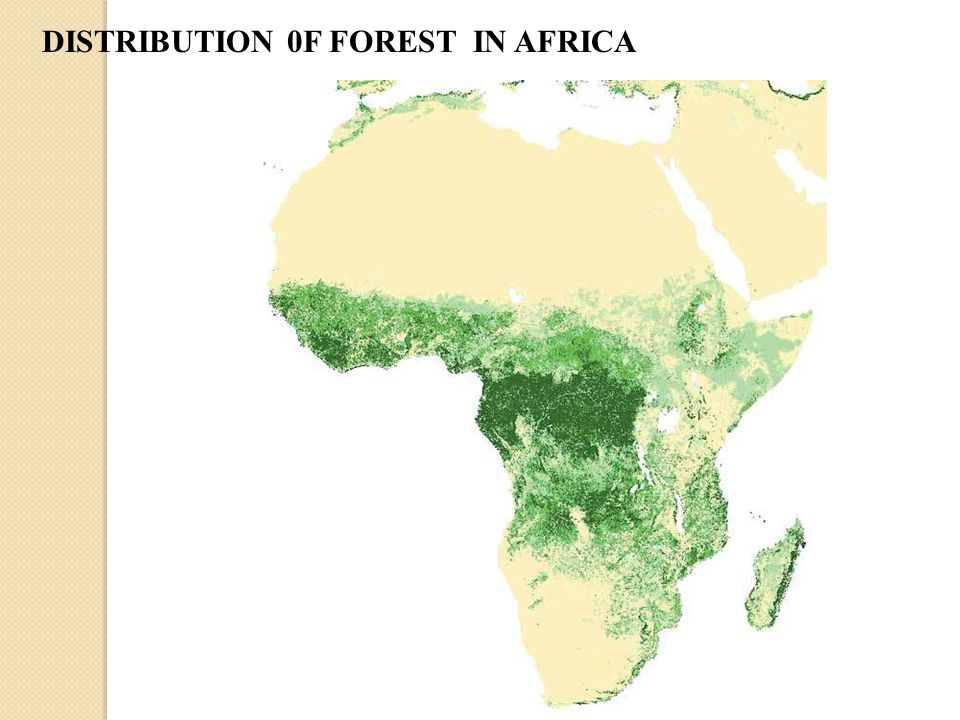 DISTRIBUTION 0F FOREST IN AFRICA