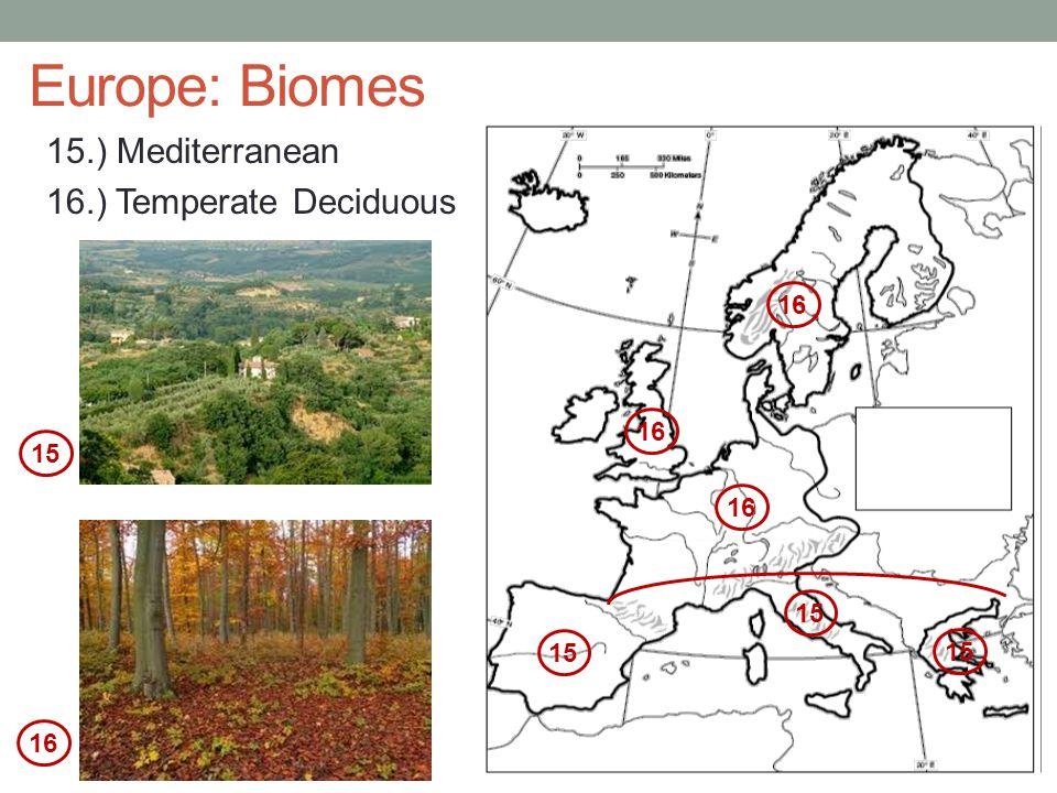 Europe: Biomes 15.) Mediterranean 16.) Temperate Deciduous 16 16 15 16