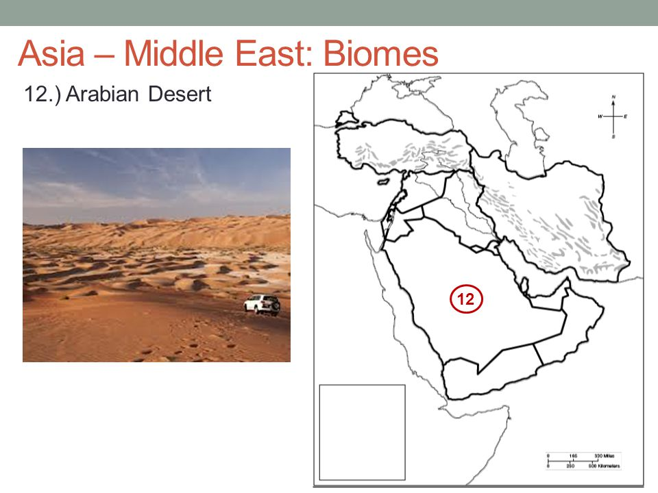 Asia – Middle East: Biomes