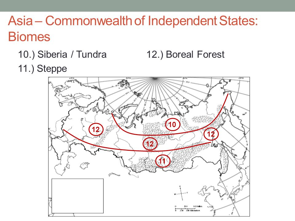 Asia – Commonwealth of Independent States: Biomes