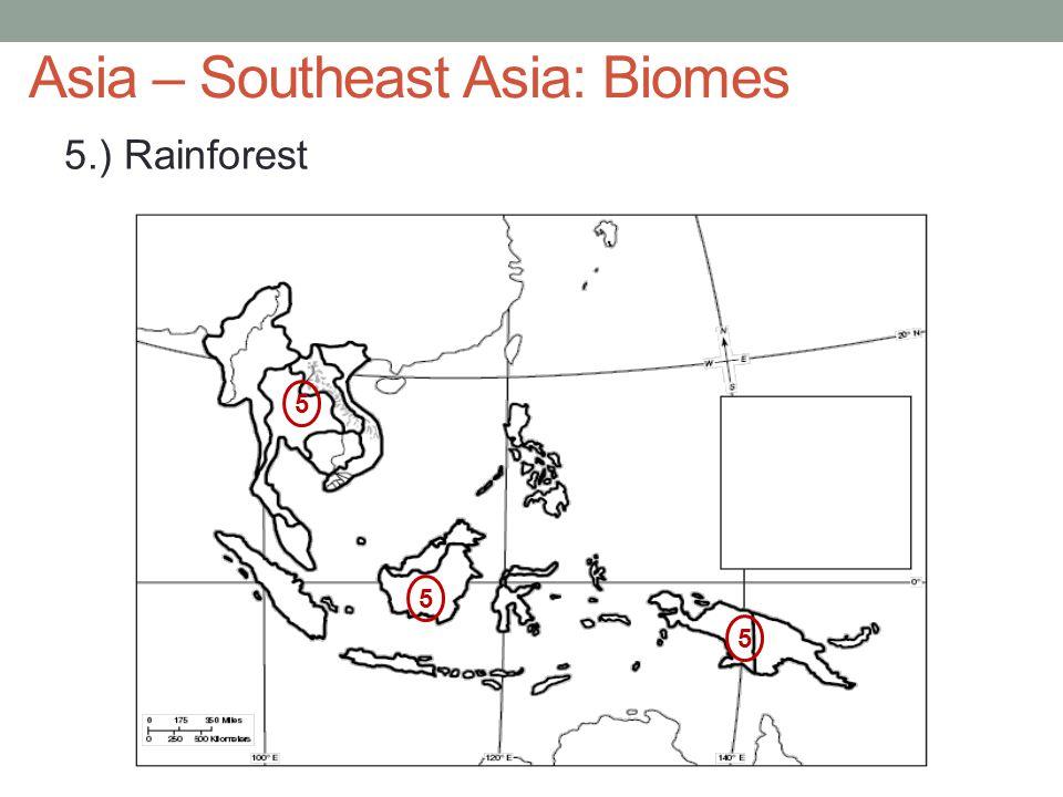 Asia – Southeast Asia: Biomes