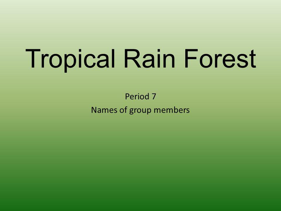 Period 7 Names of group members