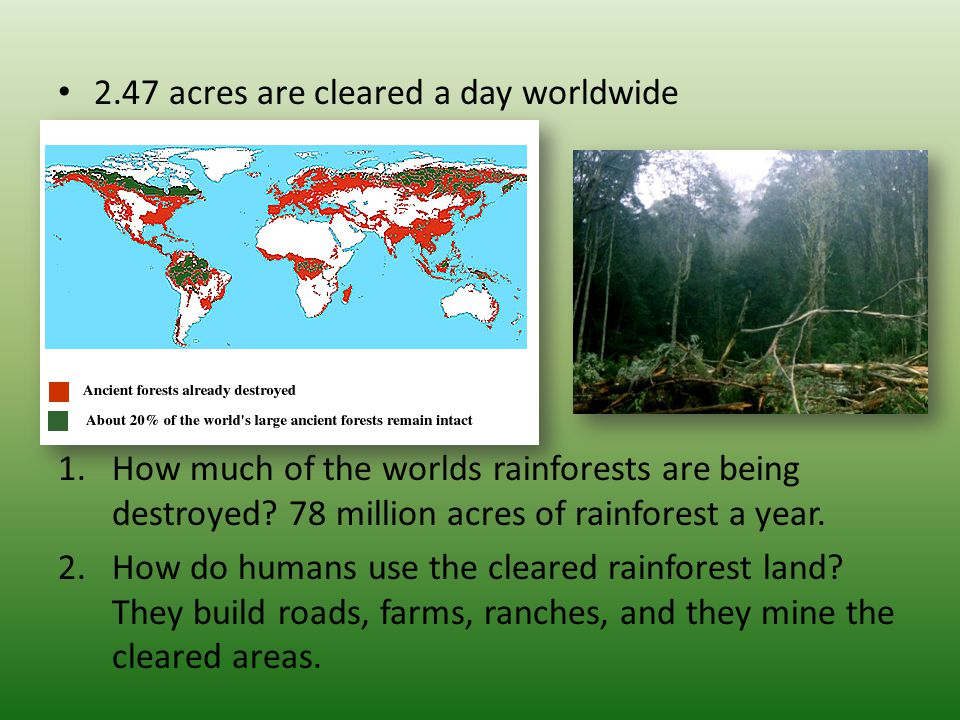 2.47 acres are cleared a day worldwide