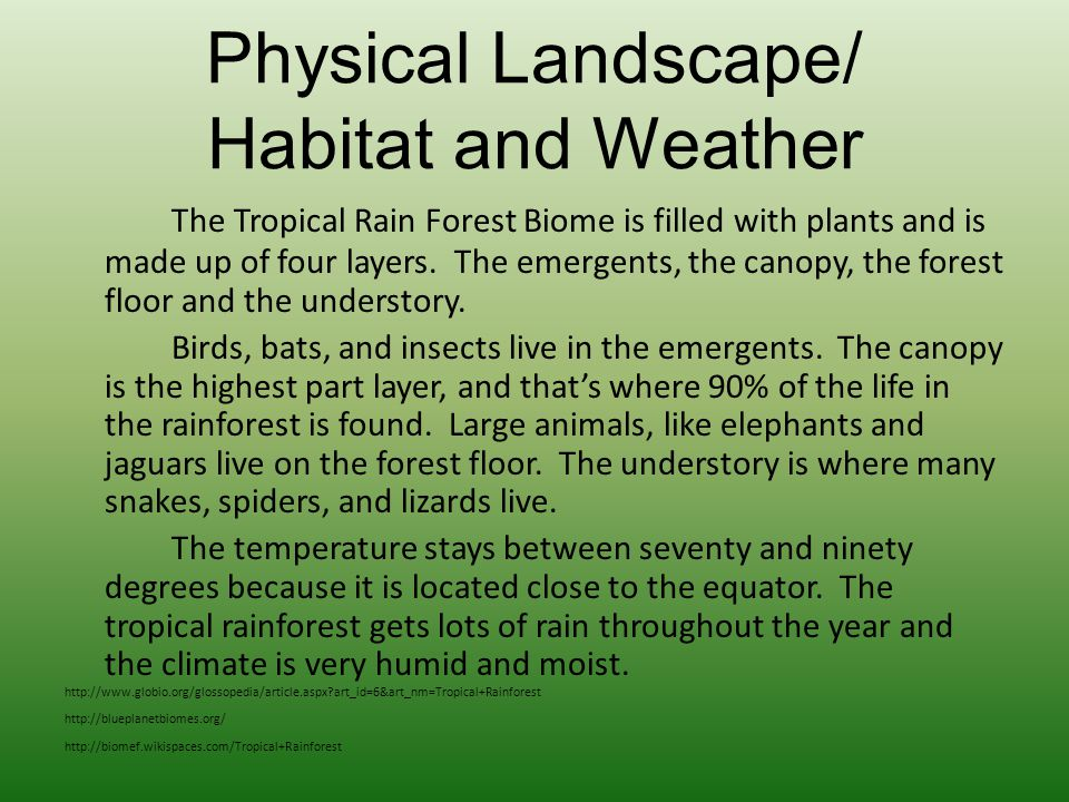 Physical Landscape/ Habitat and Weather