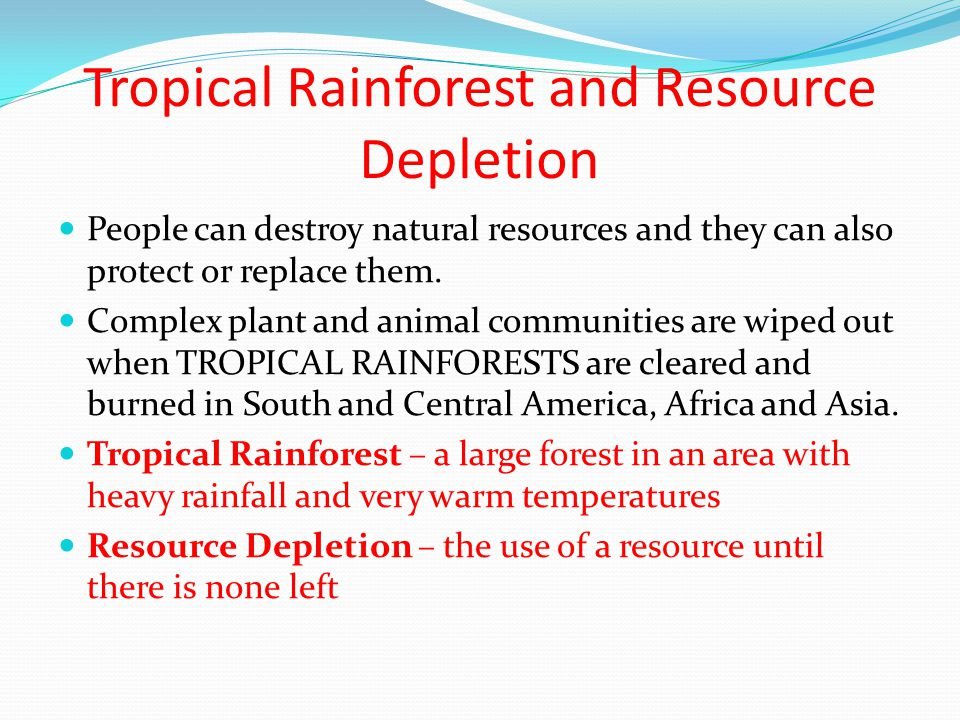 Tropical Rainforest and Resource Depletion