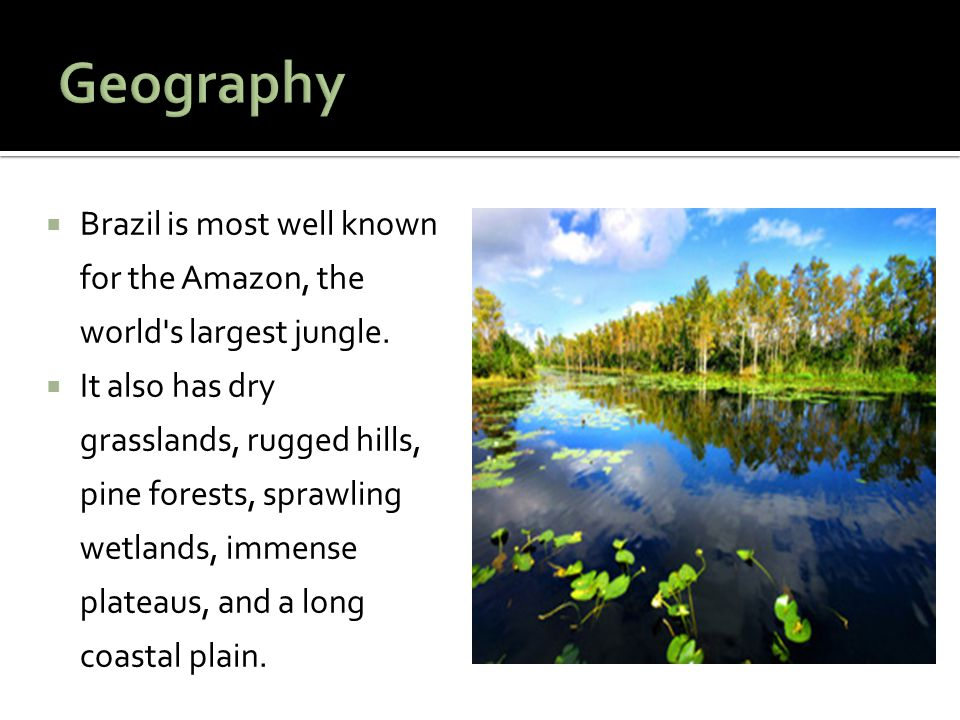 Geography Brazil is most well known for the Amazon, the world s largest jungle.