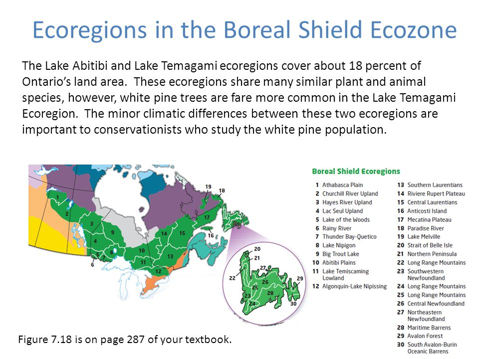 Ecoregions in the Boreal Shield Ecozone