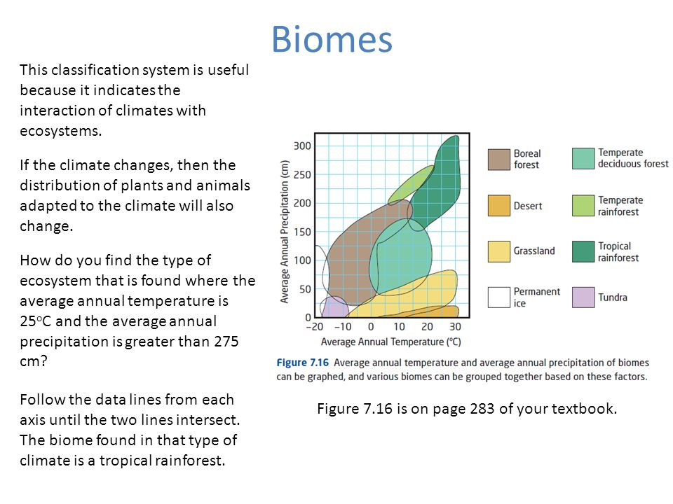 Biomes This classification system is useful because it indicates the interaction of climates with ecosystems.