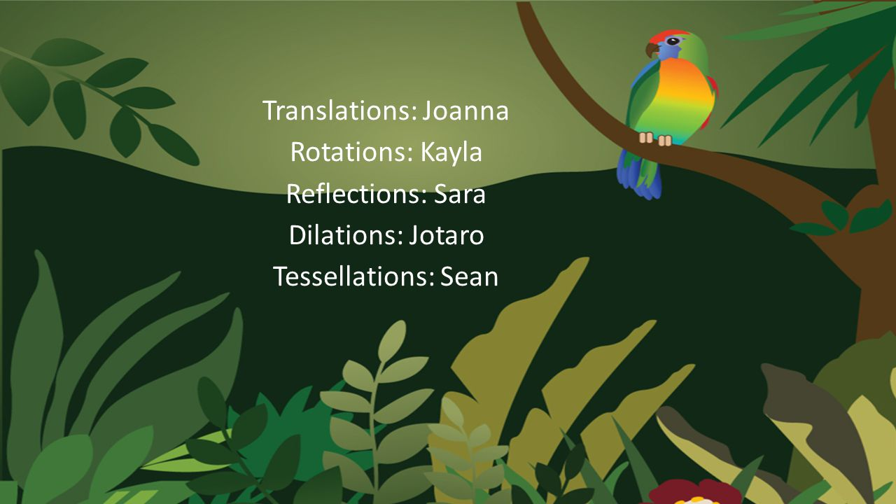Translations: Joanna Rotations: Kayla Reflections: Sara Dilations: Jotaro Tessellations: Sean
