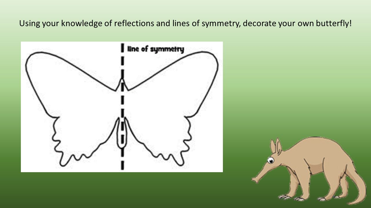 Using your knowledge of reflections and lines of symmetry, decorate your own butterfly!