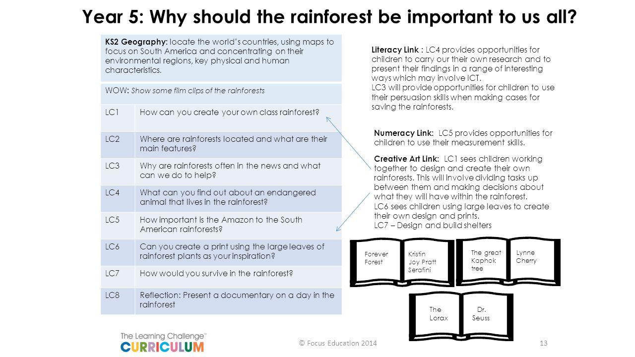 Year 5: Why should the rainforest be important to us all