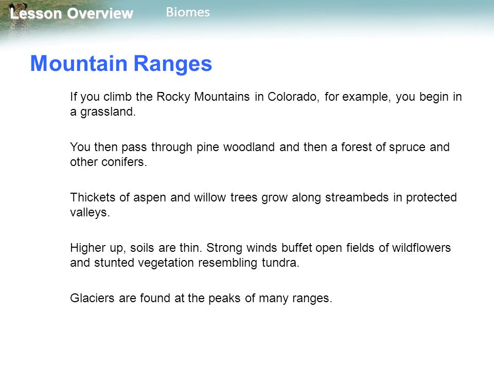 Mountain Ranges If you climb the Rocky Mountains in Colorado, for example, you begin in a grassland.