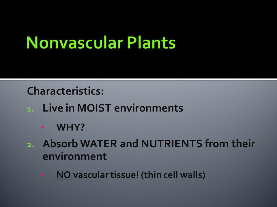 Nonvascular Plants Characteristics: Live in MOIST environments