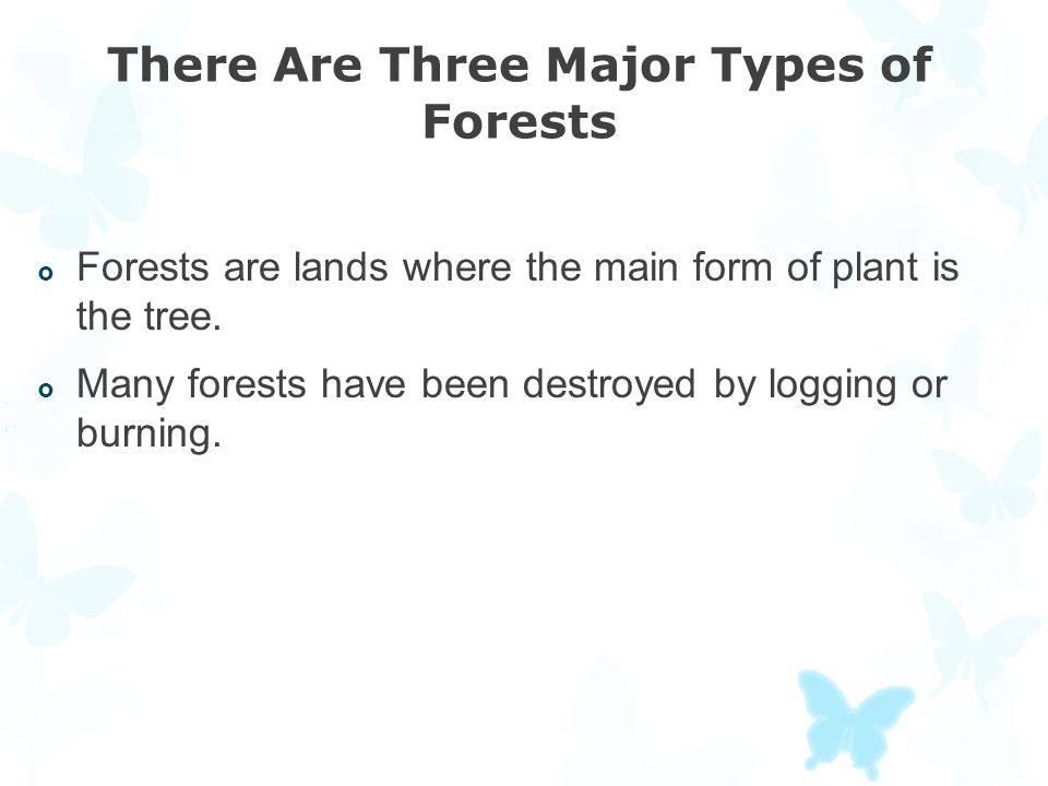 There Are Three Major Types of Forests