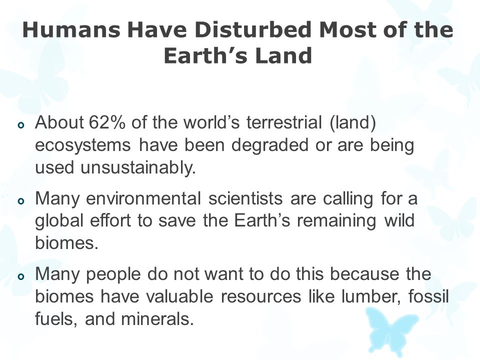 Humans Have Disturbed Most of the Earth's Land