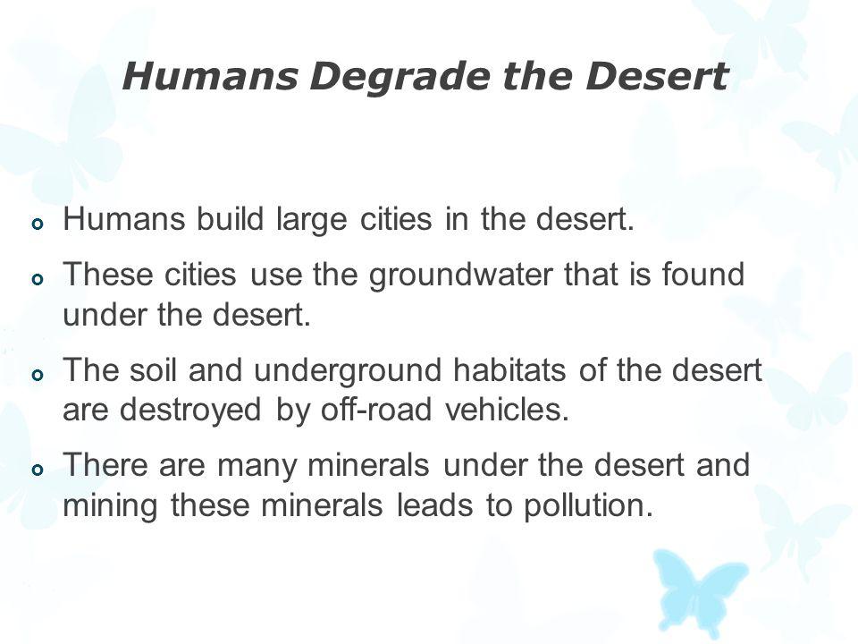 Humans Degrade the Desert