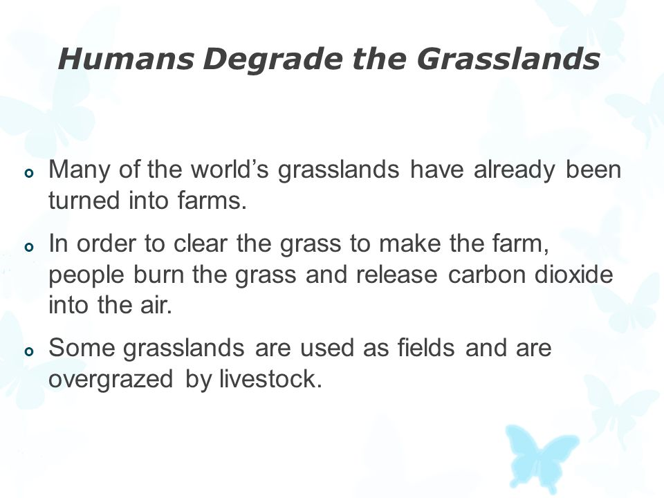 Humans Degrade the Grasslands