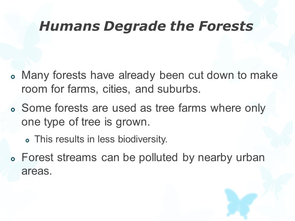 Humans Degrade the Forests