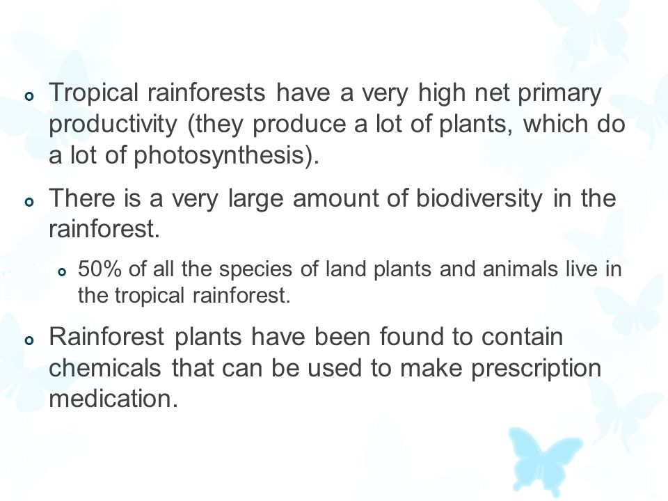 There is a very large amount of biodiversity in the rainforest.