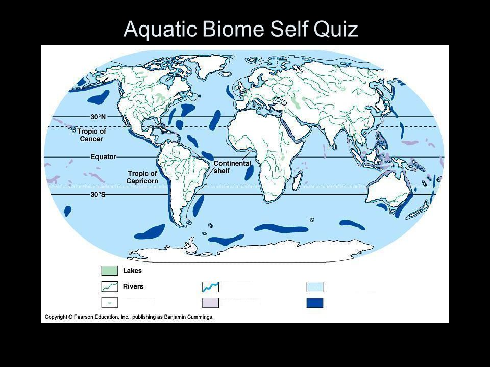 Aquatic Biome Self Quiz