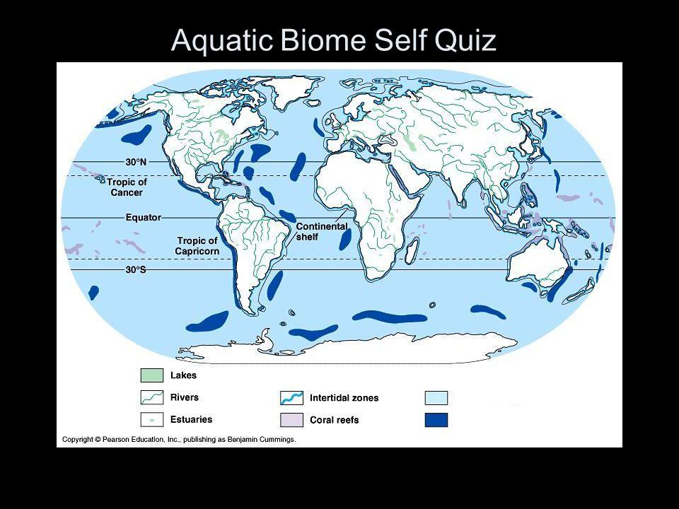 Aquatic Biome Self Quiz