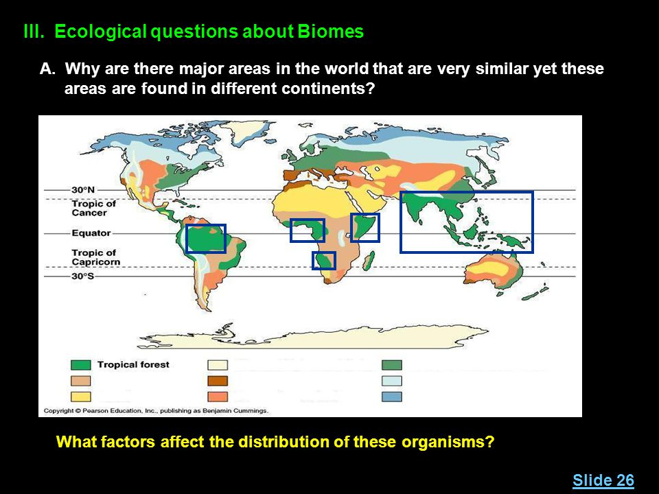 III. Ecological questions about Biomes