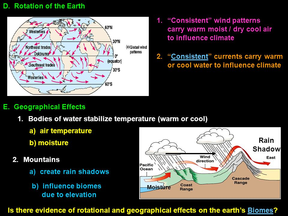 Consistent currents carry warm or cool water to influence climate