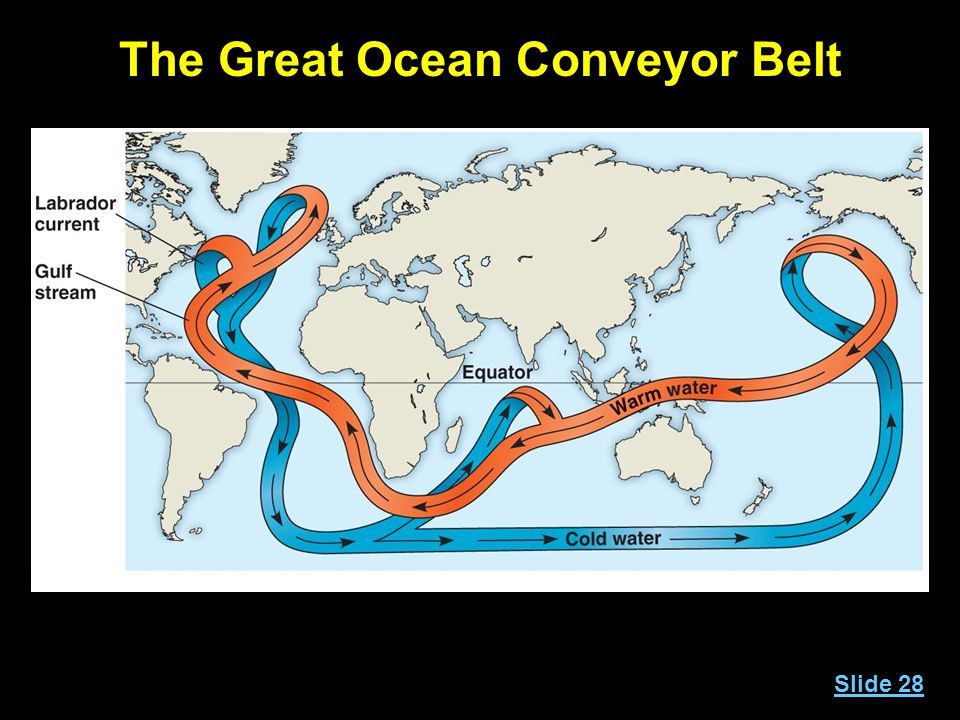 The Great Ocean Conveyor Belt