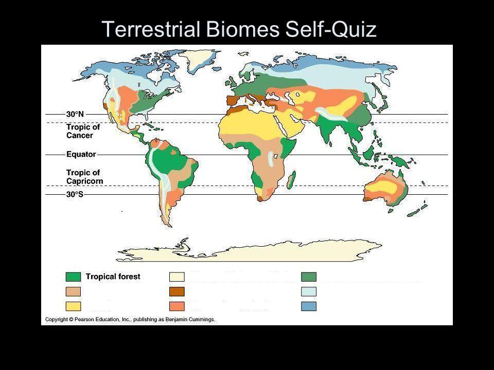 Terrestrial Biomes Self-Quiz