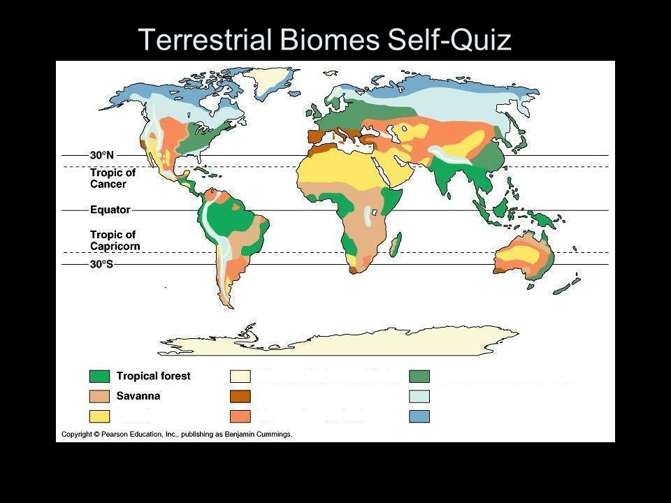 Terrestrial Biomes Self-Quiz