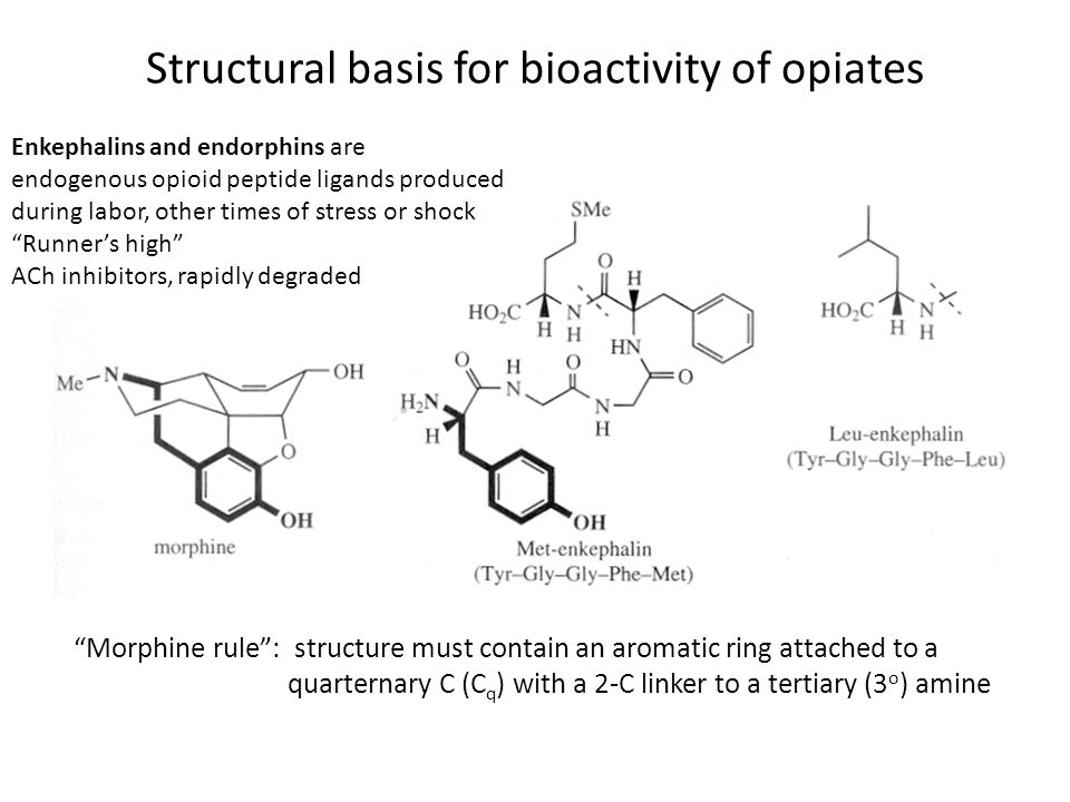 Structural basis for bioactivity of opiates