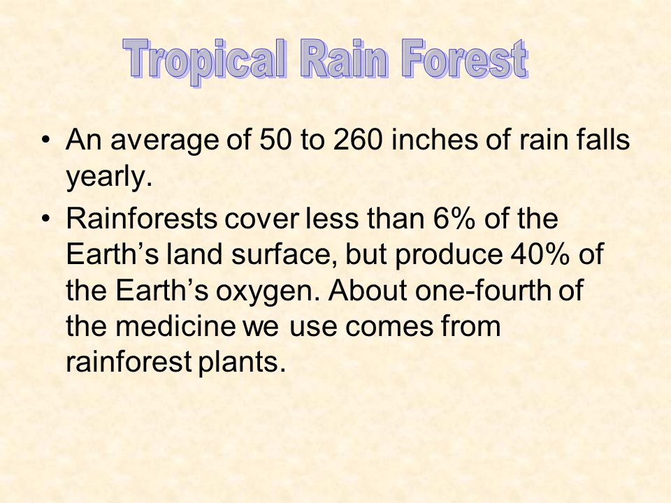 Tropical Rain Forest An average of 50 to 260 inches of rain falls yearly.