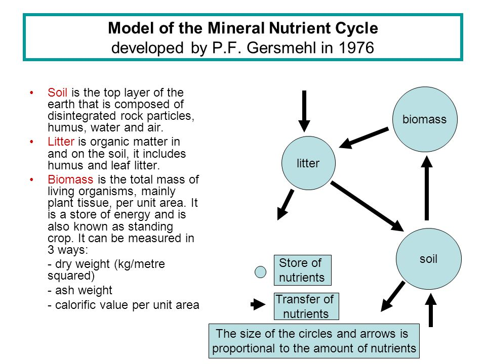 Model of the Mineral Nutrient Cycle developed by P.F. Gersmehl in 1976