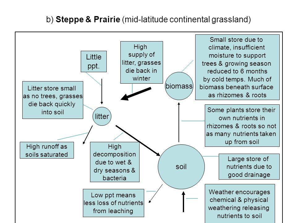 b) Steppe & Prairie (mid-latitude continental grassland)