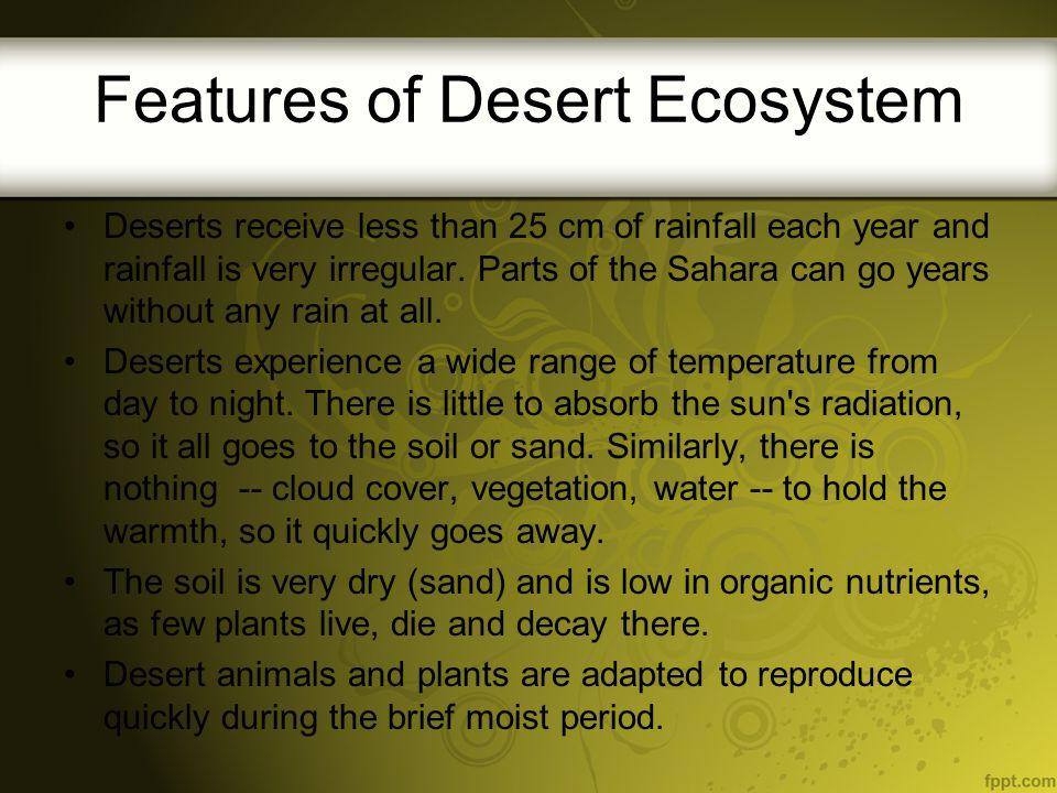 Features of Desert Ecosystem