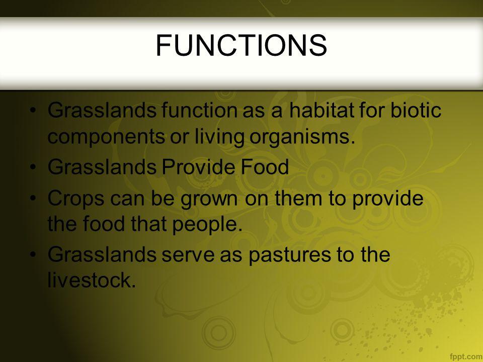 FUNCTIONS Grasslands function as a habitat for biotic components or living organisms. Grasslands Provide Food.
