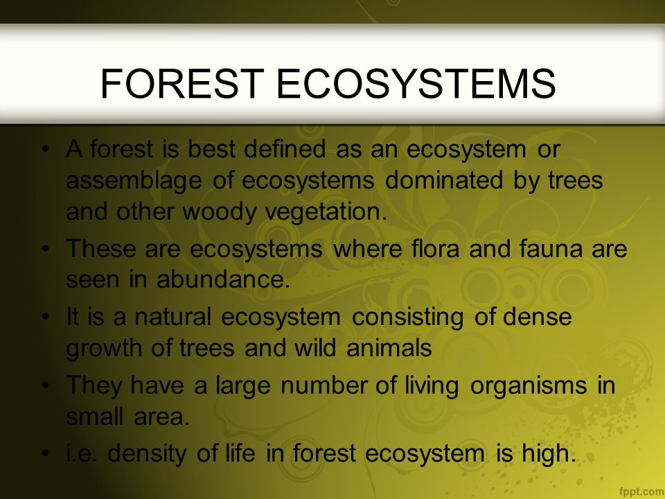 FOREST ECOSYSTEMS A forest is best defined as an ecosystem or assemblage of ecosystems dominated by trees and other woody vegetation.