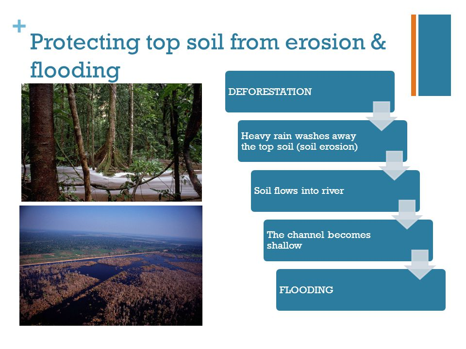 Protecting top soil from erosion & flooding