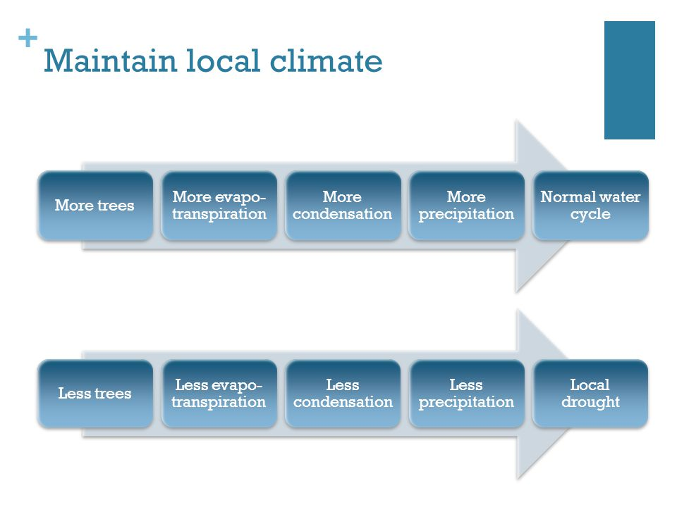 Maintain local climate