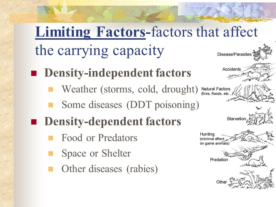 Limiting Factors-factors that affect the carrying capacity