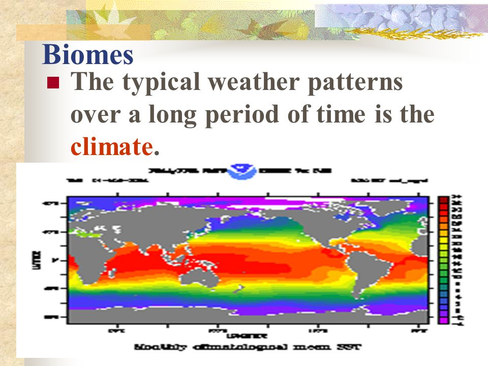 Biomes The typical weather patterns over a long period of time is the climate.