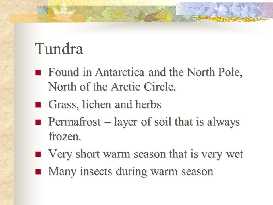 Tundra Found in Antarctica and the North Pole, North of the Arctic Circle. Grass, lichen and herbs.