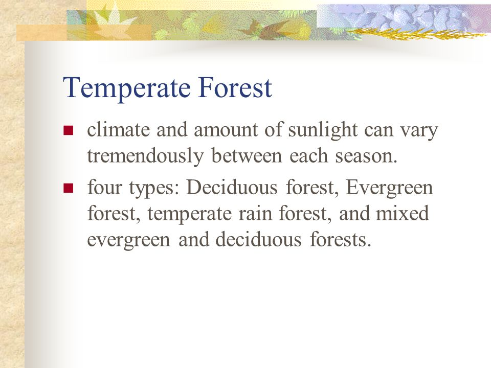 Temperate Forest climate and amount of sunlight can vary tremendously between each season.