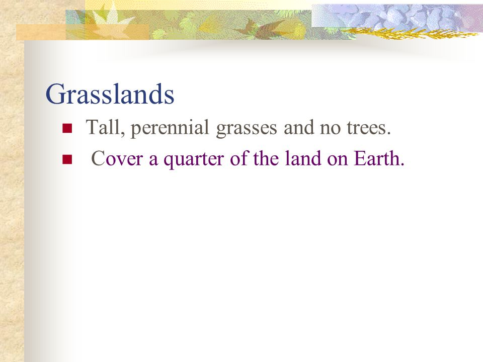Grasslands Tall, perennial grasses and no trees.