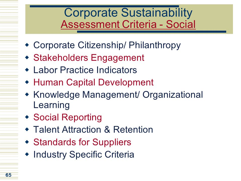 Corporate Sustainability Assessment Criteria - Social