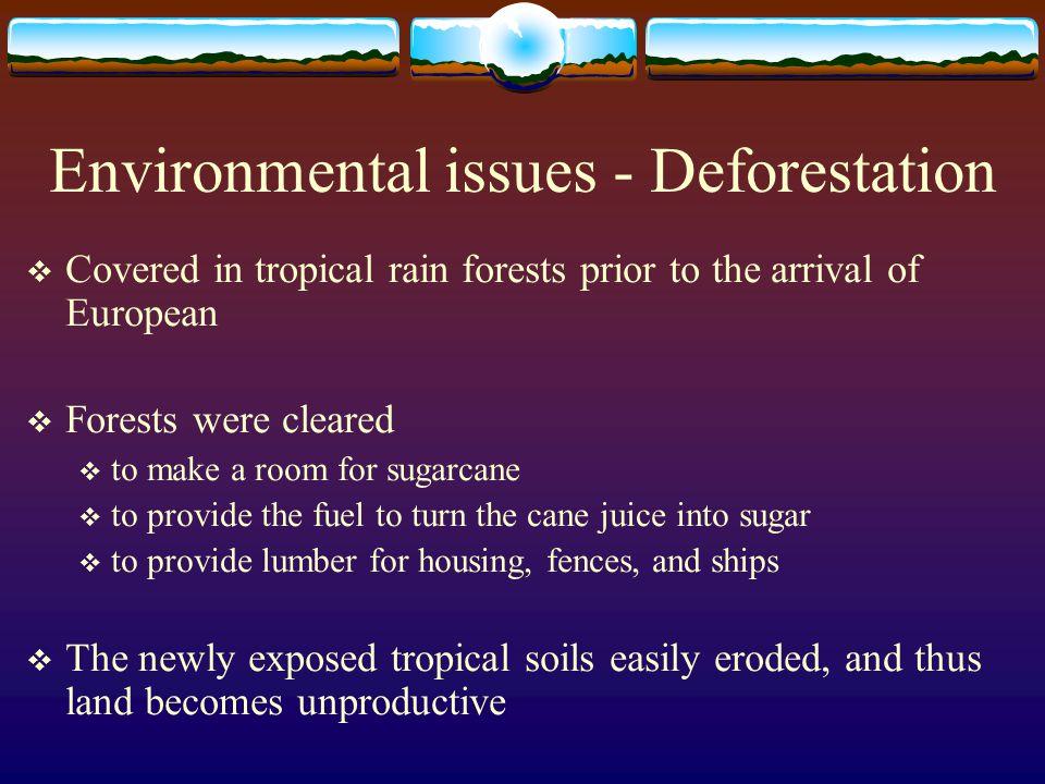 Environmental issues - Deforestation