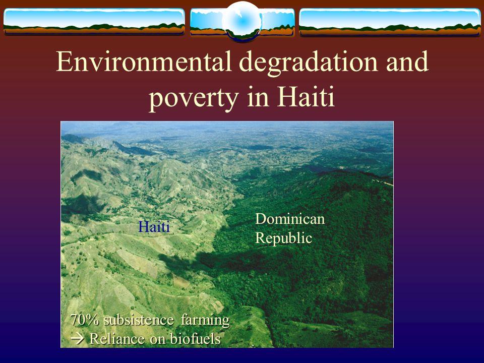 Environmental degradation and poverty in Haiti