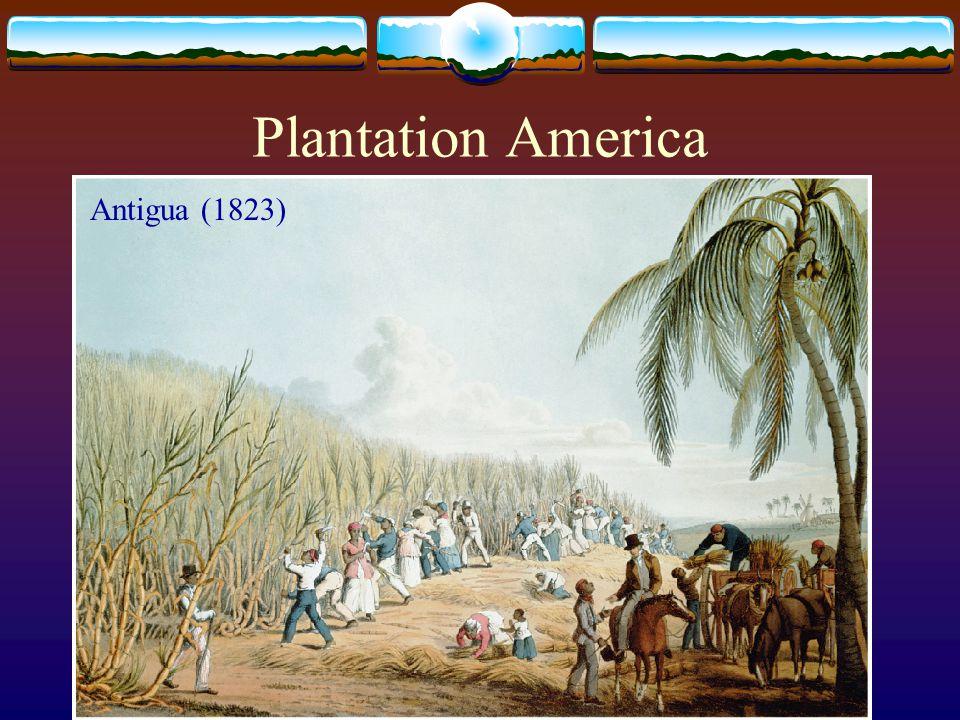 Plantation America Antigua (1823)