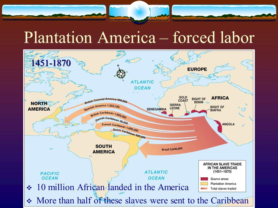Plantation America – forced labor