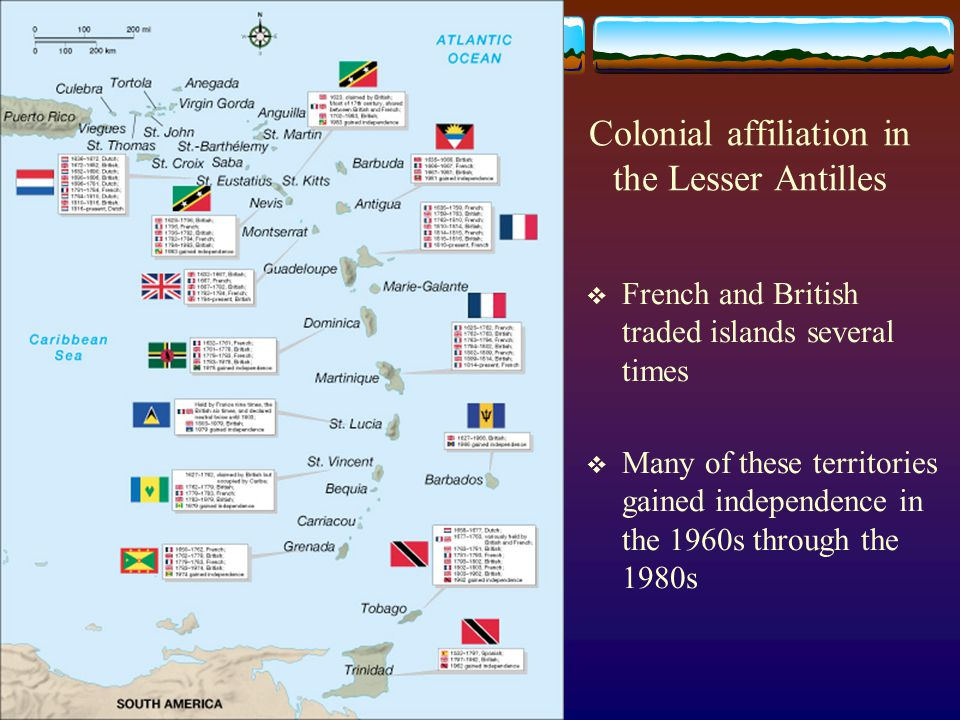 Colonial affiliation in the Lesser Antilles